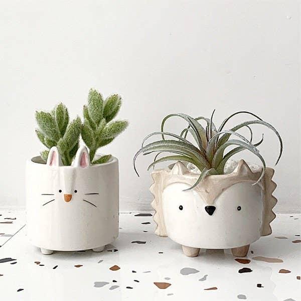 The ceramic planters with a rabbit and hedgehog design