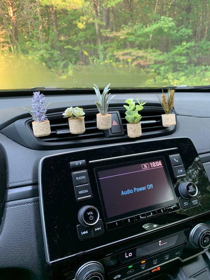tiny plastic plants with cork planters