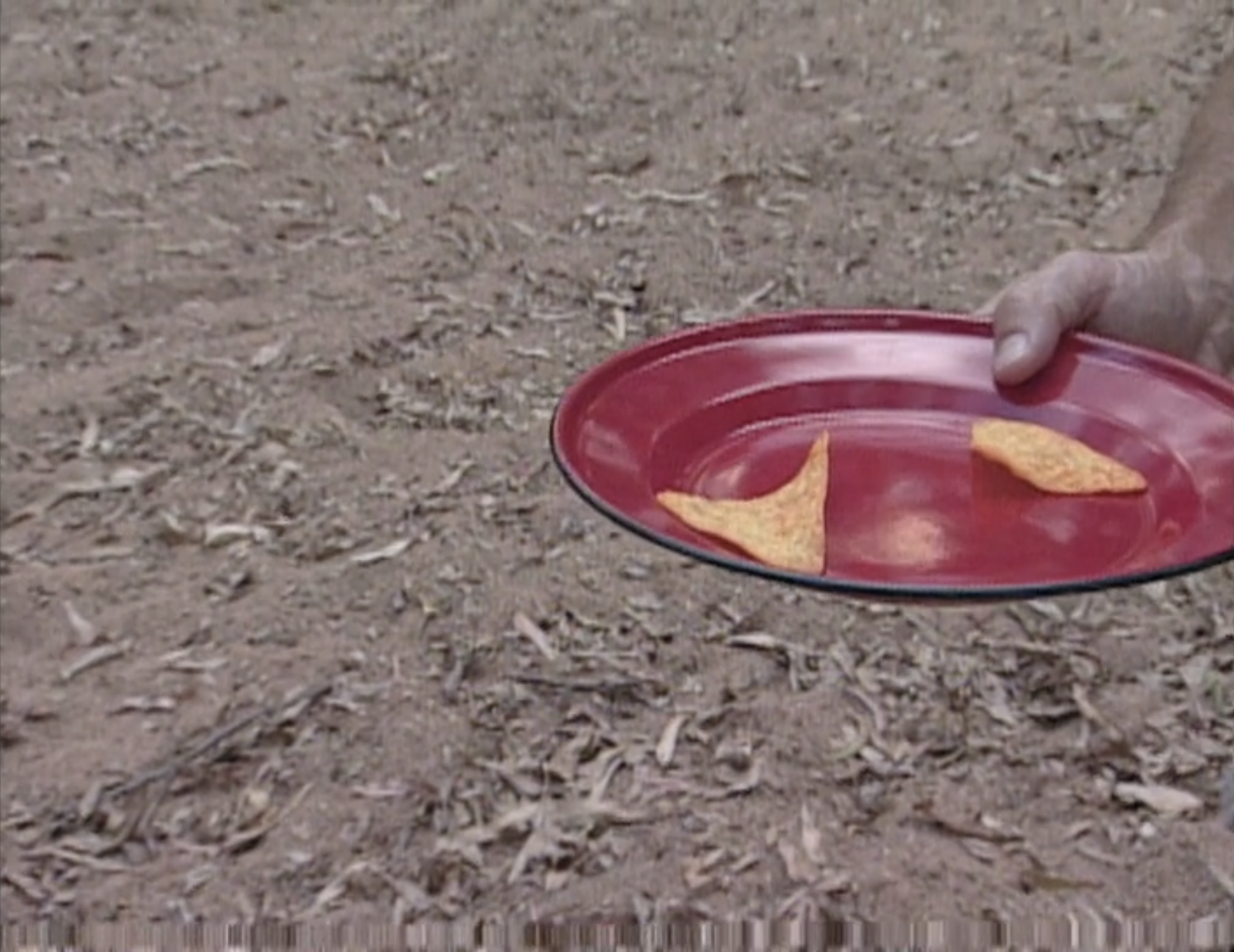 Jeff Probst holds a red plate with two Doritos on it