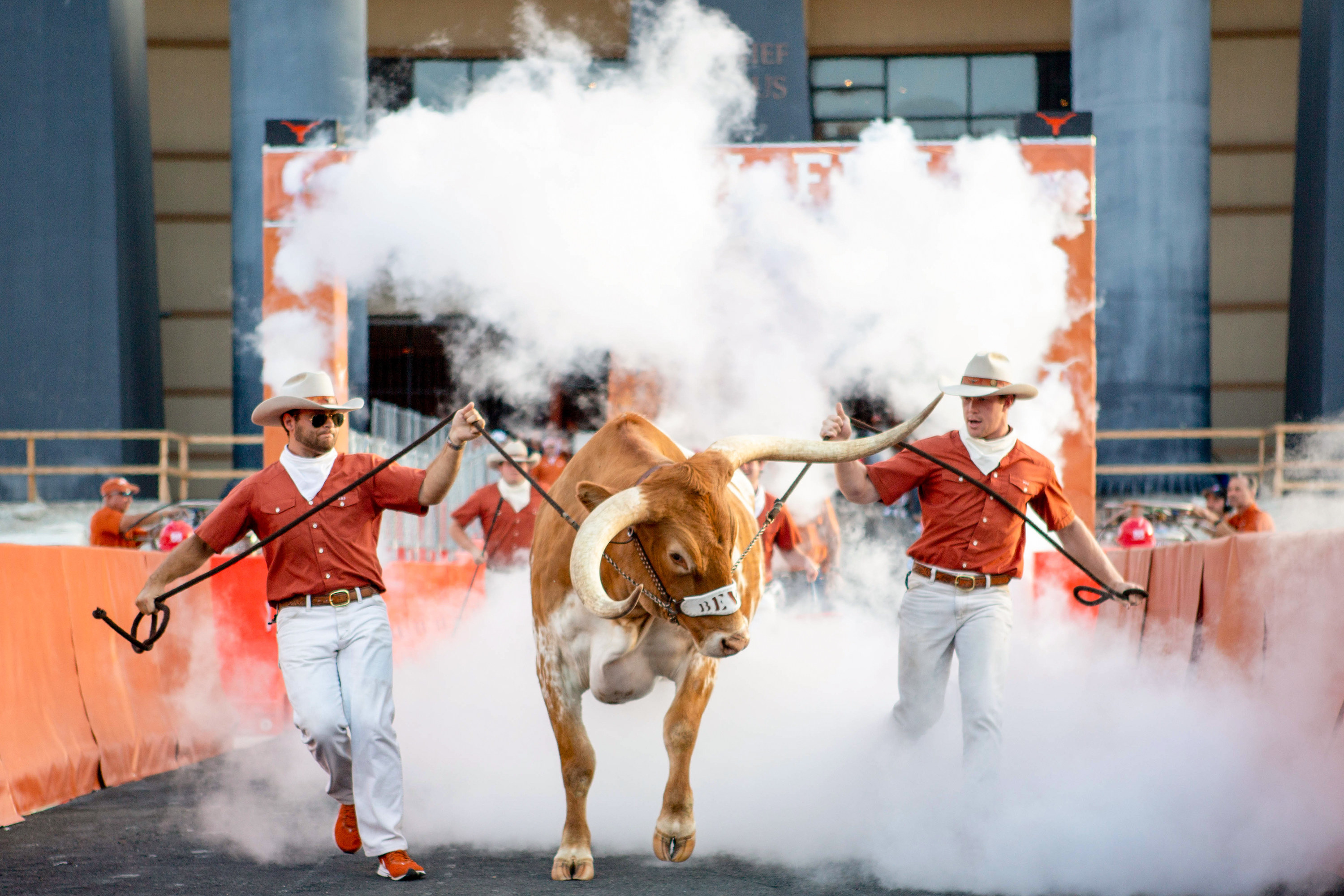 A Texas longhorn emerges from smoke on the field at a Texas football game