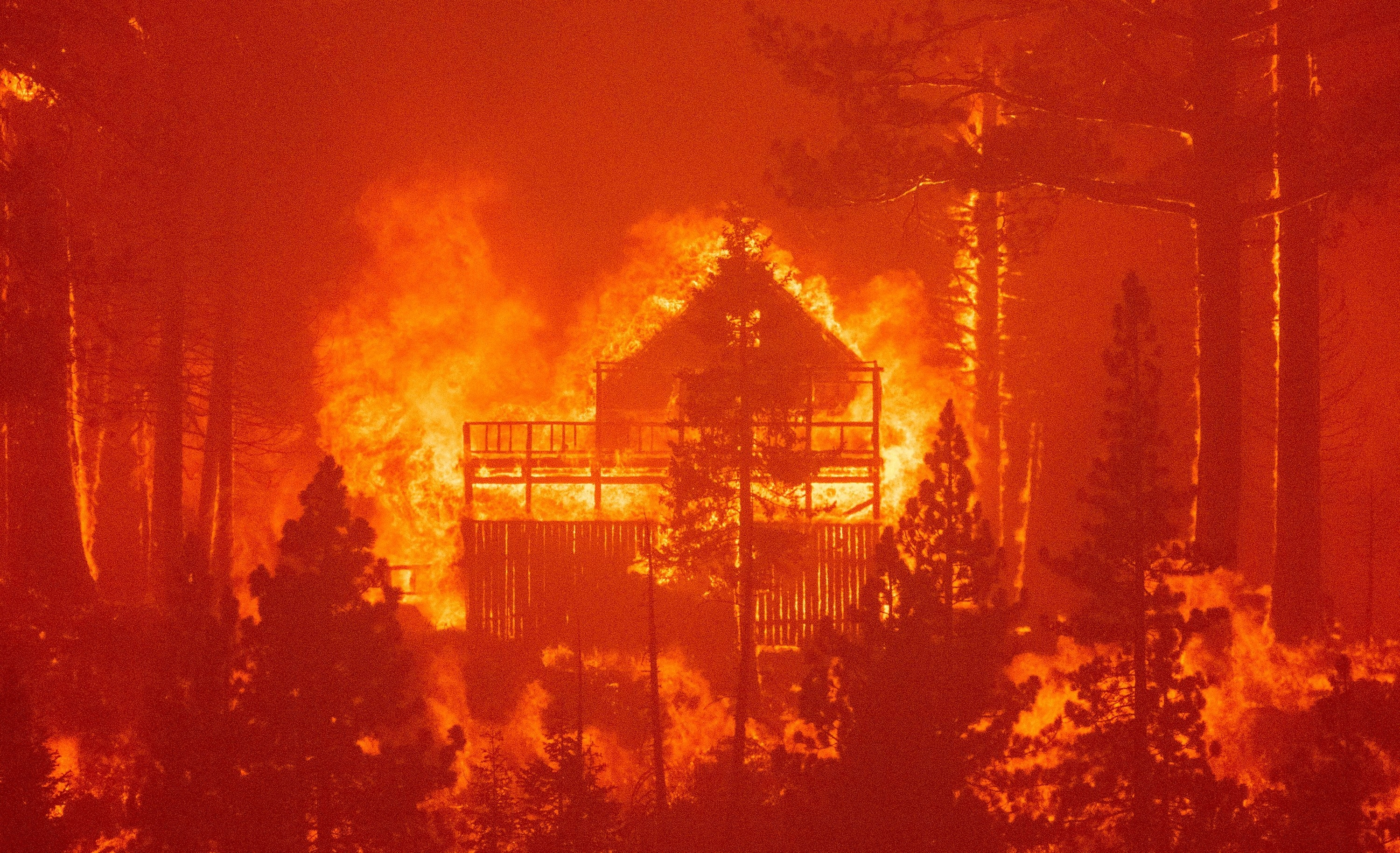 A home engulfed in flames, with trees surrounding it, in the Caldor fire