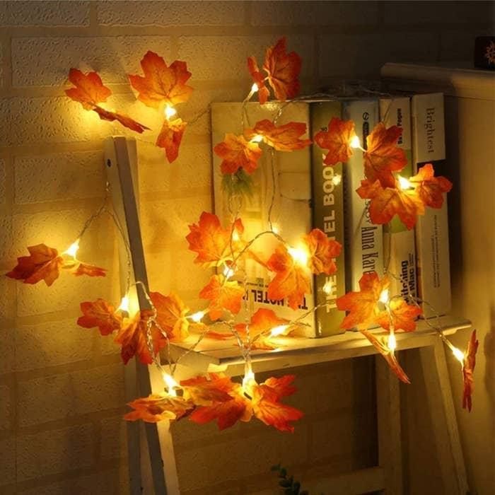 Guirnalda de luces y hojas secas