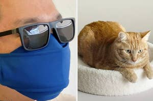person wearing face mask made for people who wear glasses, cat on fancy cat bed