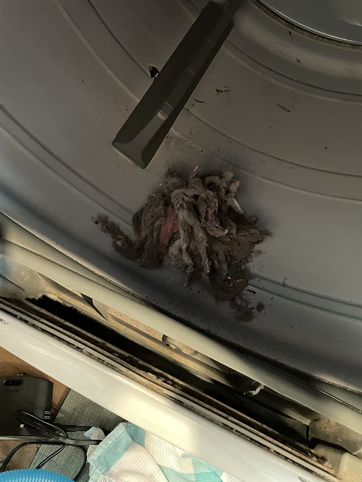 a reviewer photo of the removed lint from a dryer