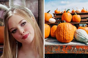 On the left, Karen from Mean Girls wearing mouse ears at the Halloween party, and on the right, a bunch of pumpkins at the pumpkin patch
