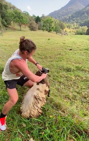 Nick holding onto the sheep's head