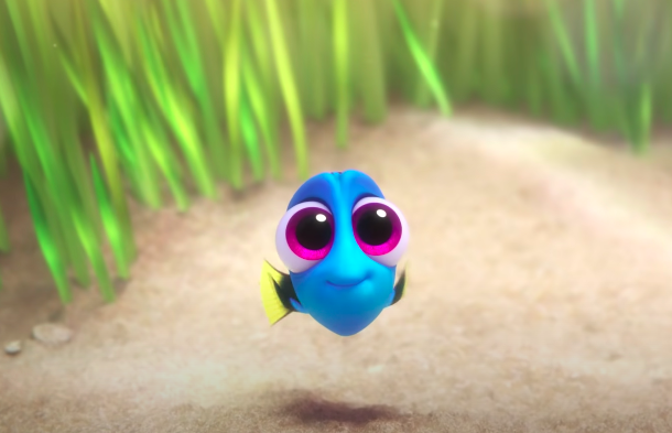 Dory as a baby