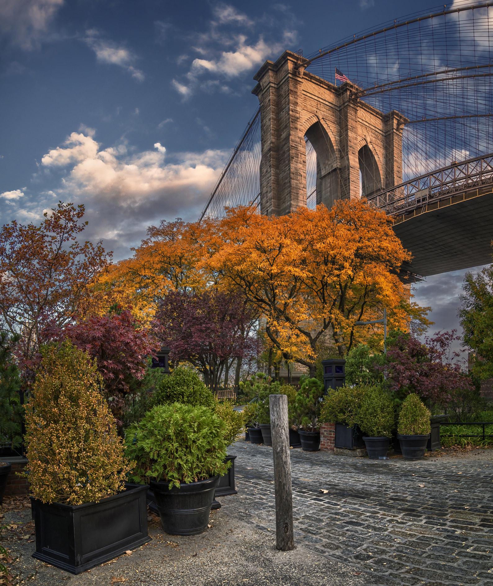 The Brooklyn Bridge with fall foliage