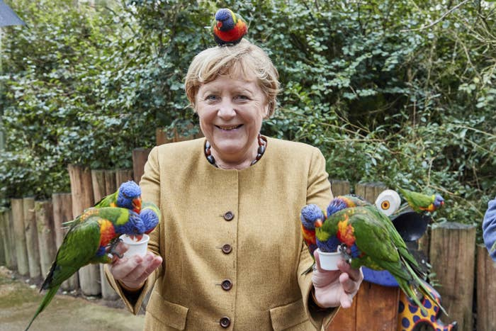 Merkel smiles as six colorful birds eat birdseed from cups she is holding and one perches on her head