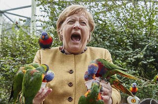 Merkel screams in agony as the birds swamp her and bite her hands