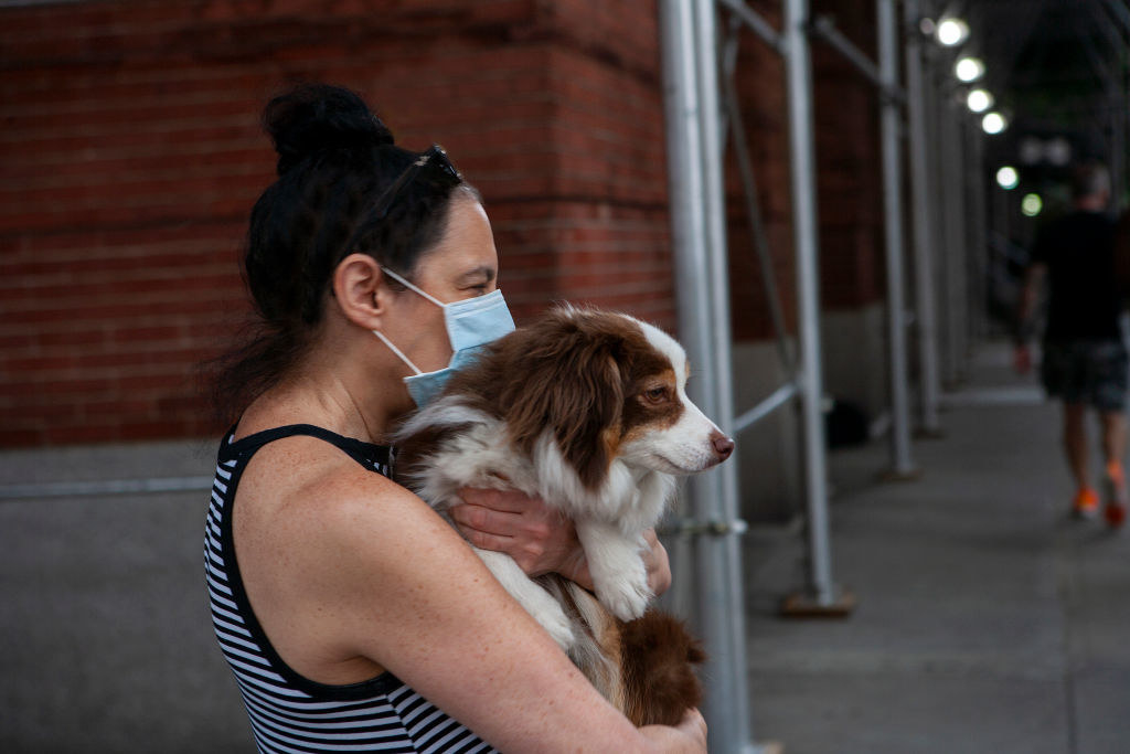 A woman wearing a face mask and holding a dog