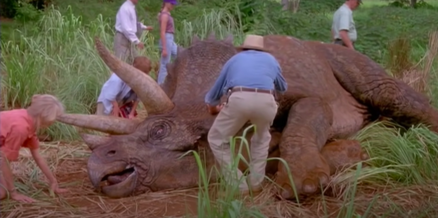 the team tends to a sick dinosaur that's laying on its side