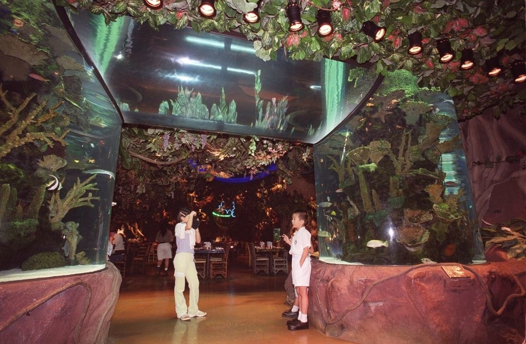The Rainforest Cafe in a mall