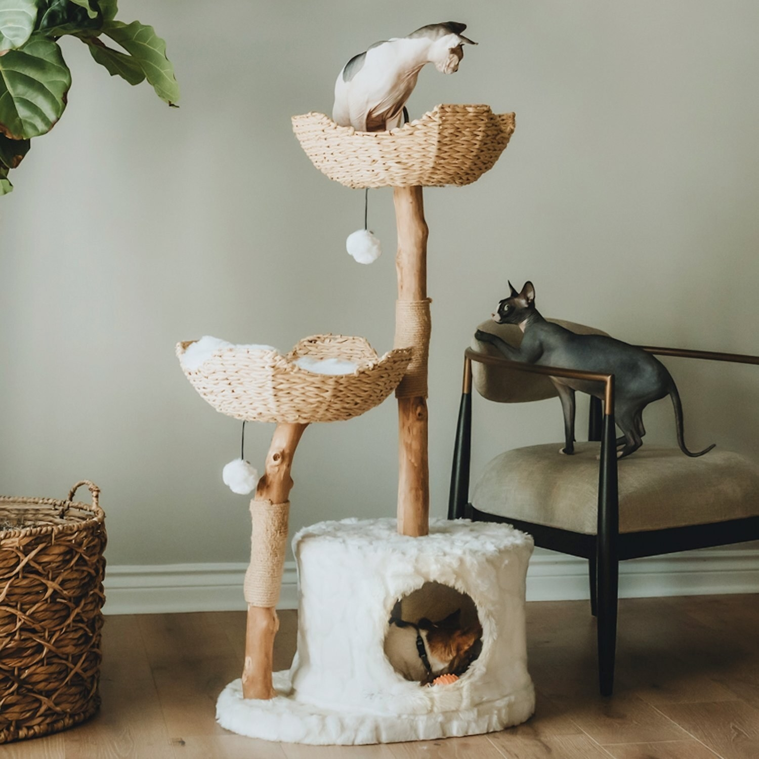 three cats playing in a cat condo. there are two rattan baskets, a fuzzy hiding space, natural log stands covered in scratch-able material, and two hanging pom pom toys