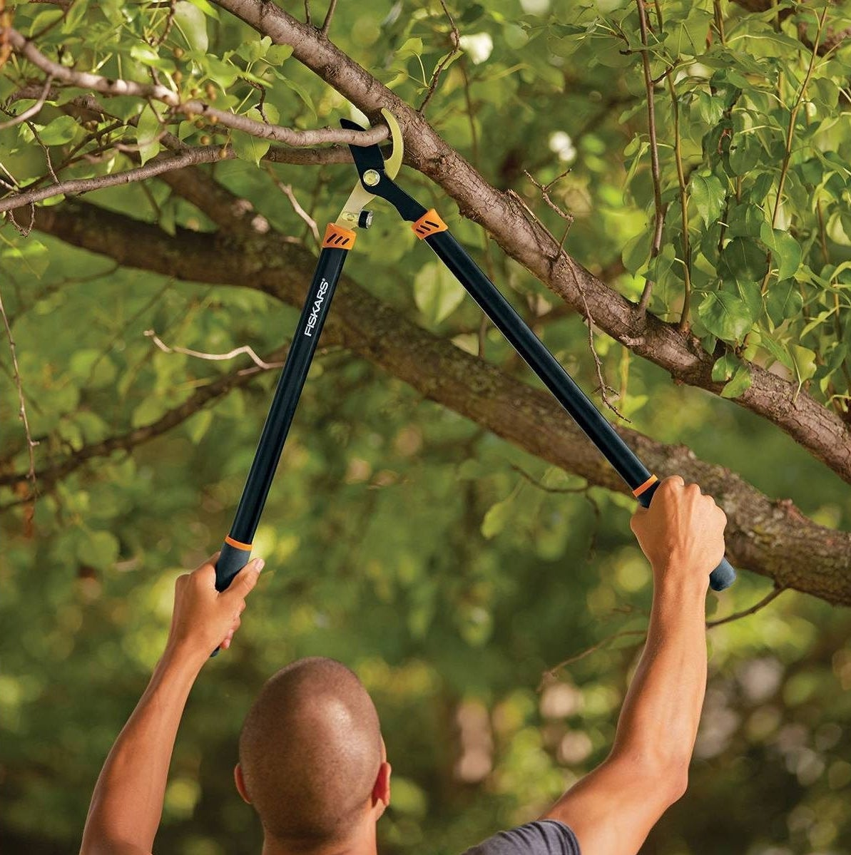 a man clipping branches with a brand trimmer