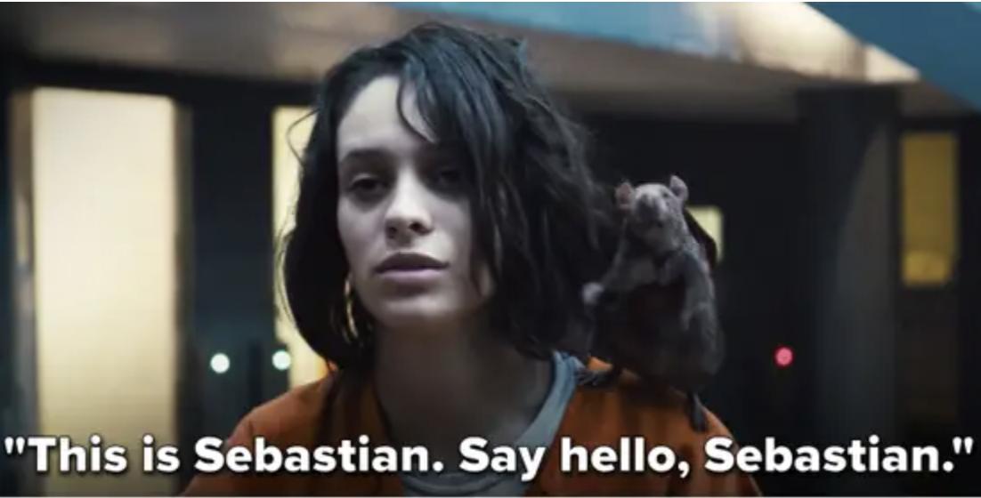 Ratcatcher 2 and her rat Sebastian