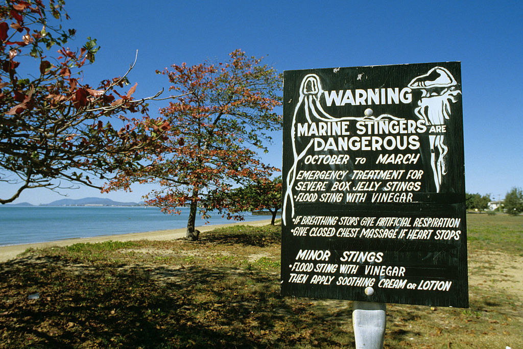 A warning sign on an Australian beach for jellyfish
