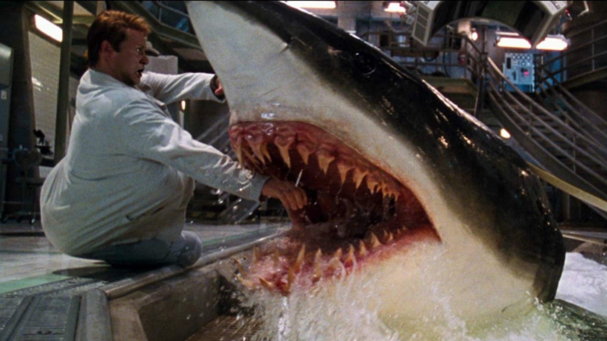A shark bites a scientists arm
