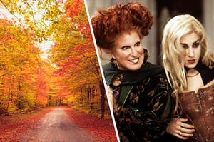 """An empty road covered in colorful leaves surrounded by brightly colored trees and Winnie and Sarah Sanderson from """"Hocus Pocus"""""""
