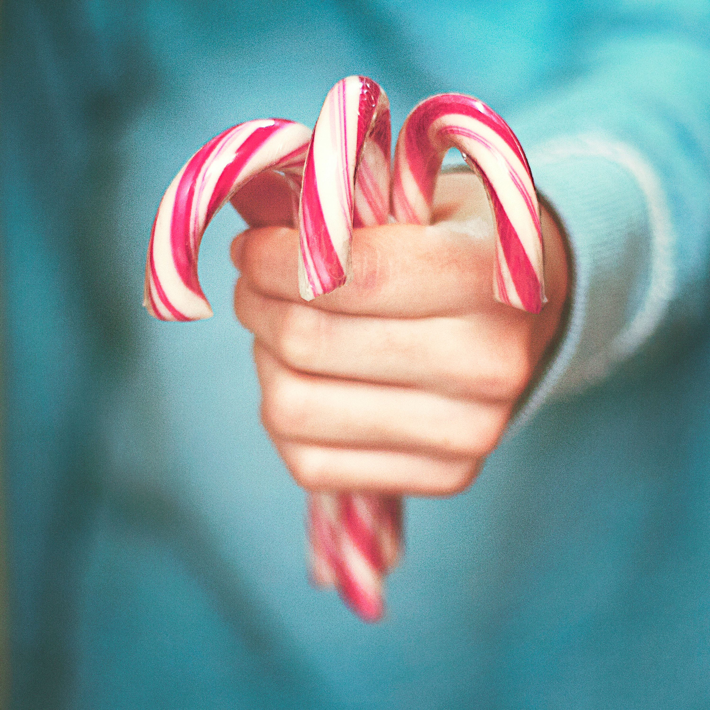 A hand holding out three candy canes.