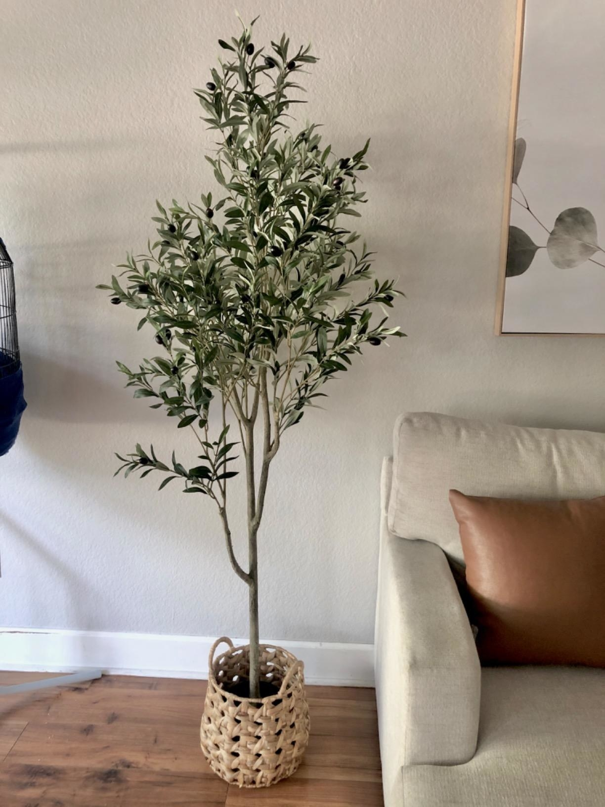 Reviewer's faux olive tree is in a living room