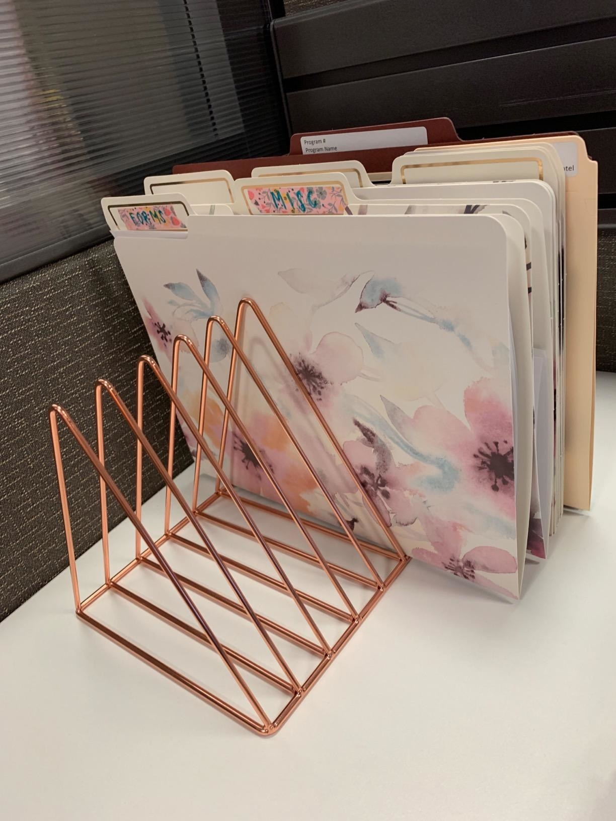 reviewer image of the rose gold organizer with folders in several slots