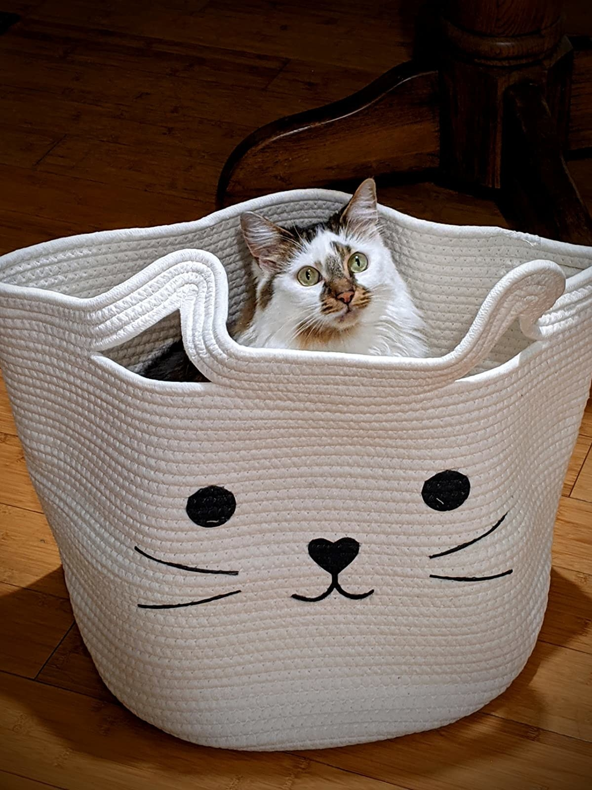 reviewer image of the white cat basket with a white and yellow cat sitting inside