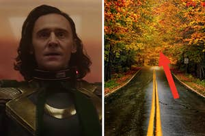 Loki is on the left with a road leading to foliage on the right