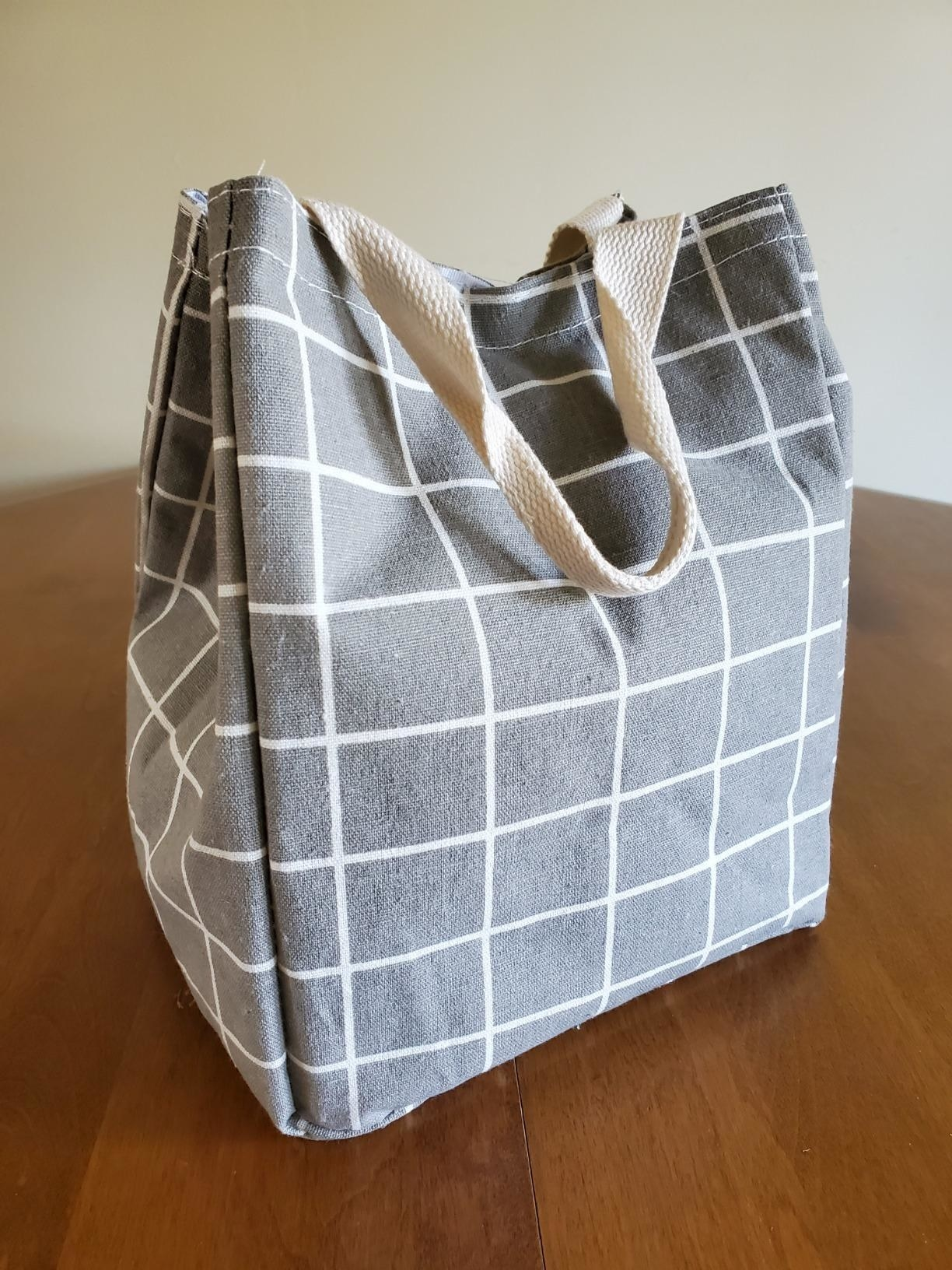 reviewer image of a gray checkered canvas lunch bag