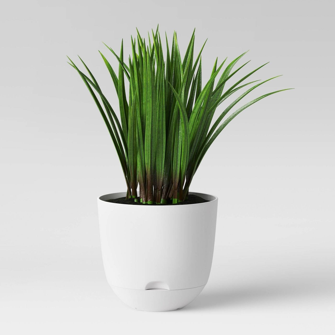 white self watering planter with plant inside
