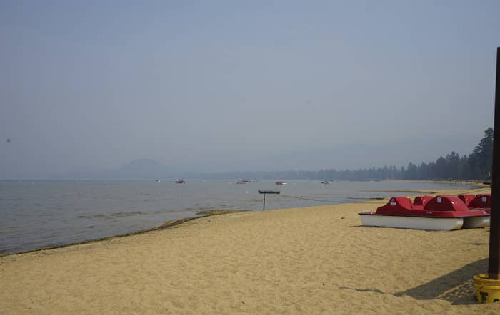 A view from a sandy shore next to a body of water shows a tree-lined horizon obscured by smoke