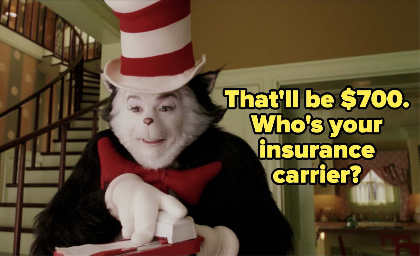 """The cat says """"that'll be 700 dollars, who's your insurance carrier?"""""""