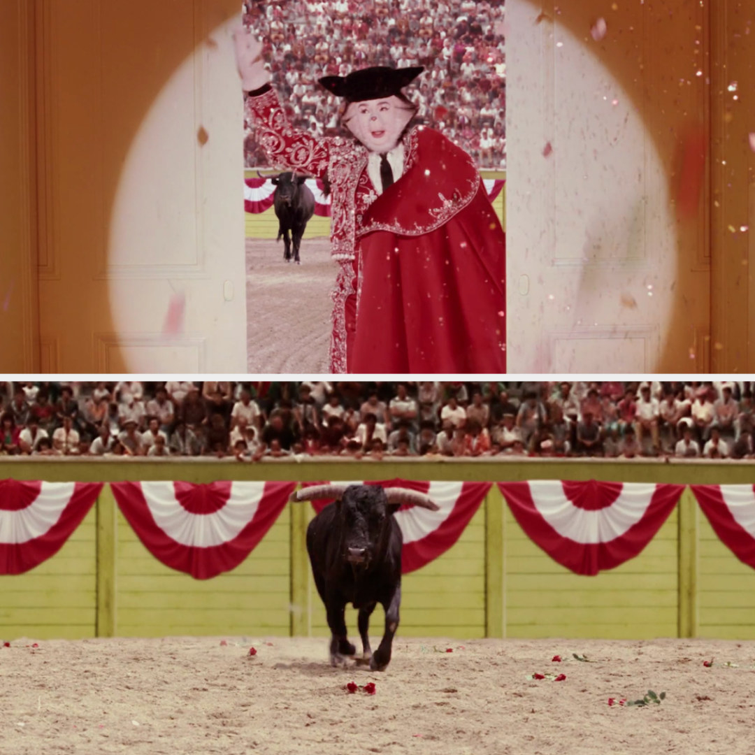 The cat as a bullfighter, with a bull charging at him