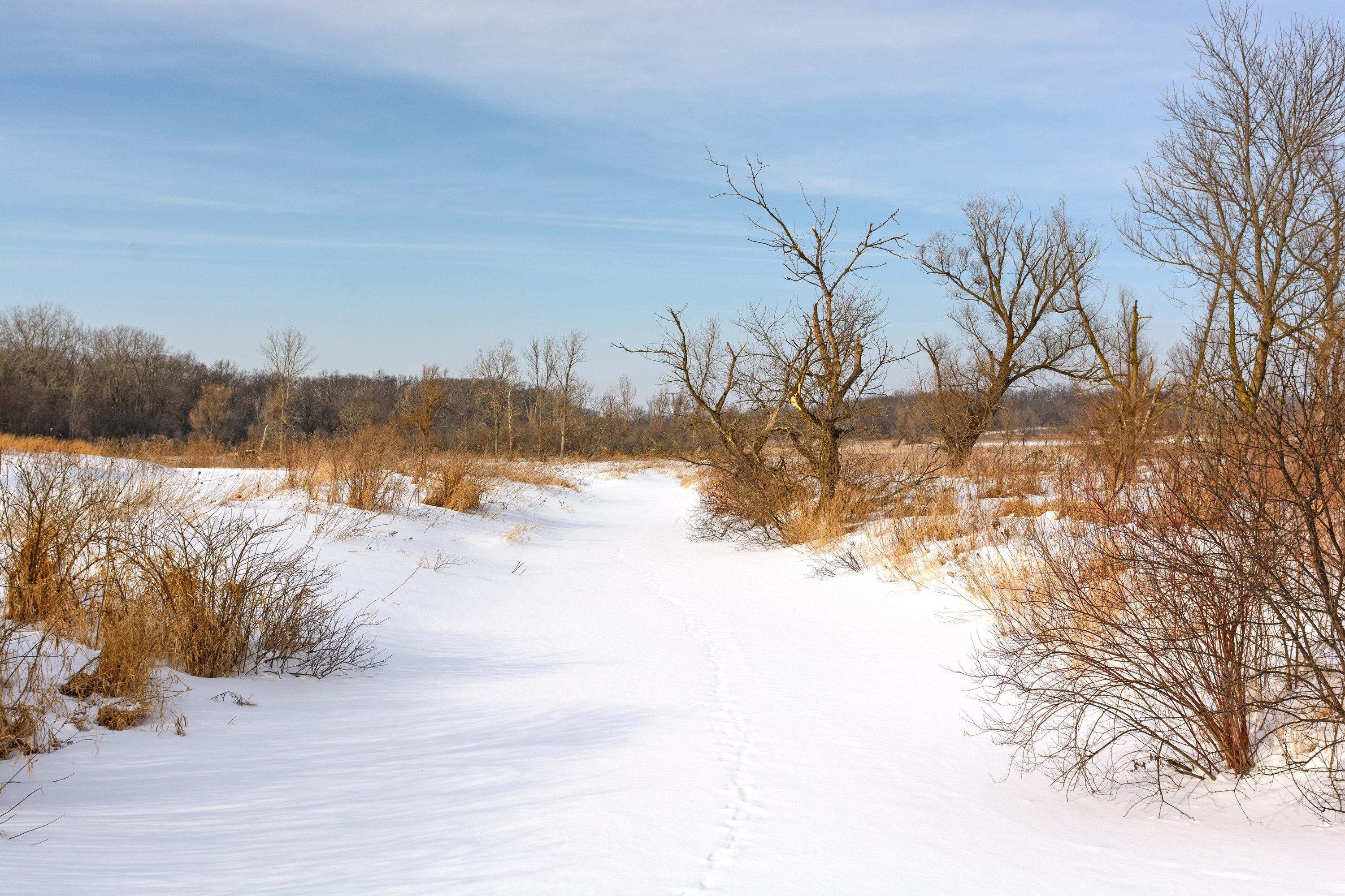 Photo of the state park in winter