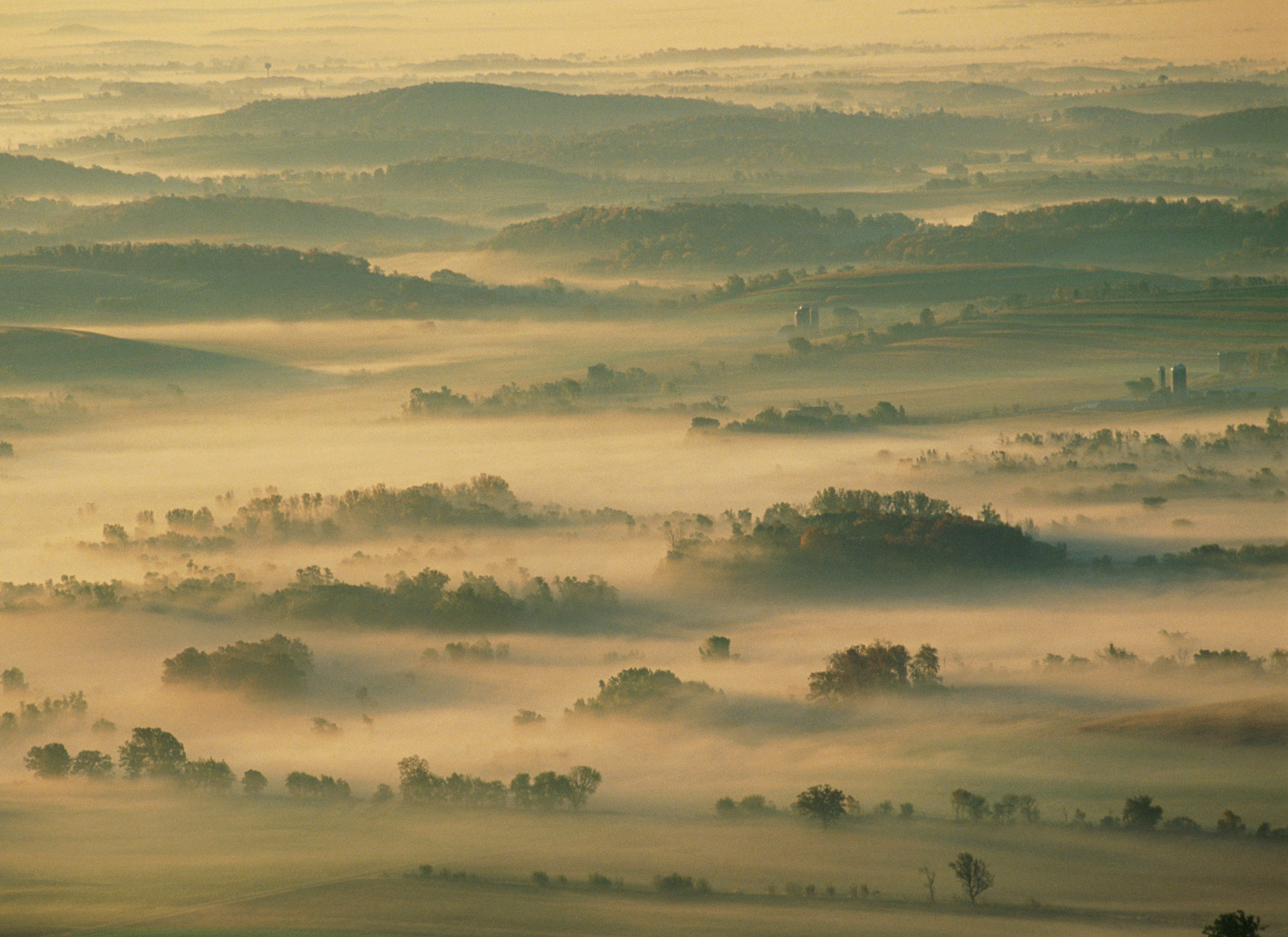 View of fog over the Kettle Moraine State Forest