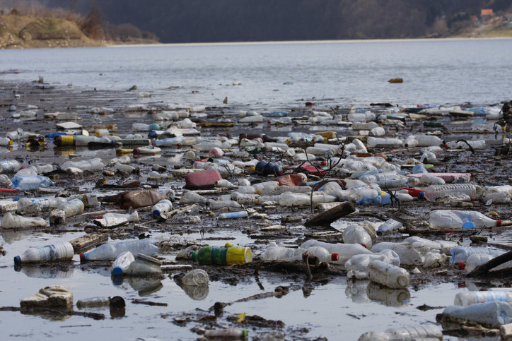 A shoreline filled with trash