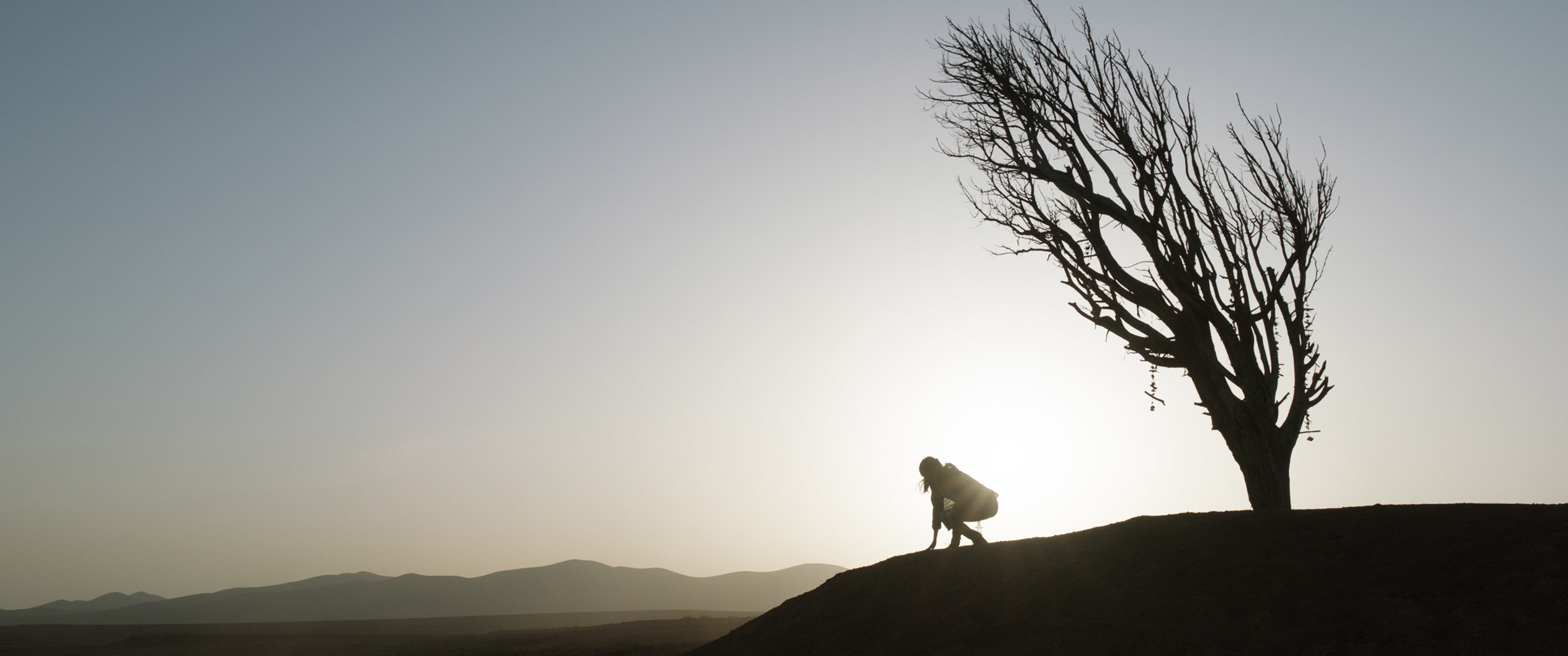 A person crouching in the distance next to a small tree