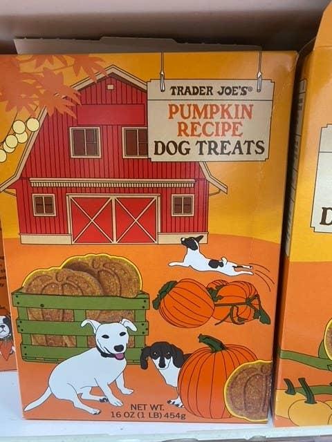 Pumpkin Recipe Dog Treats