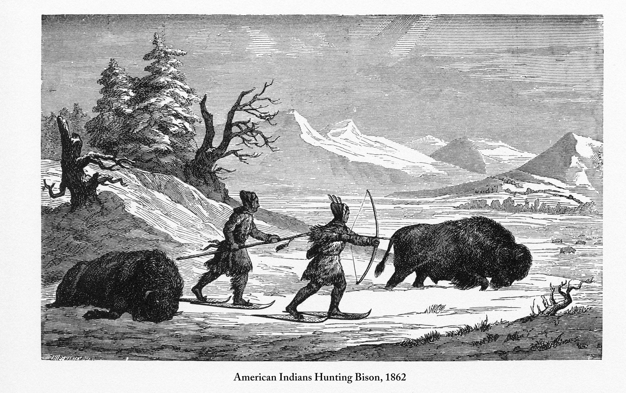 An illustration of two Native Americans using snowshoes as they hunt bison