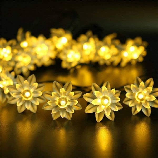 A string of lights with lotus on it