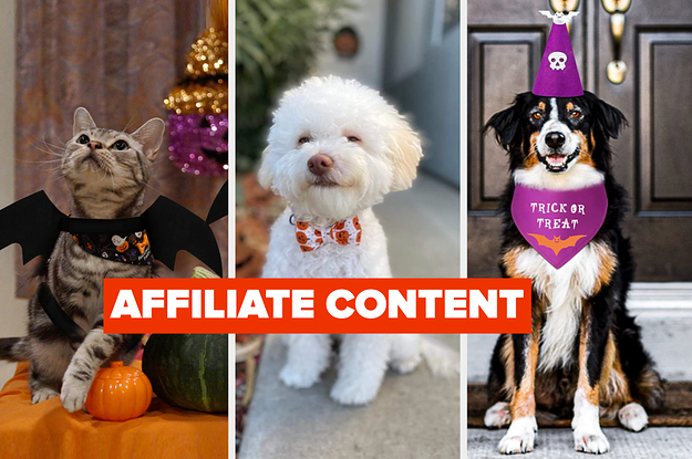 25 Of The Cutest Halloween Outfits For Your Furry Friend