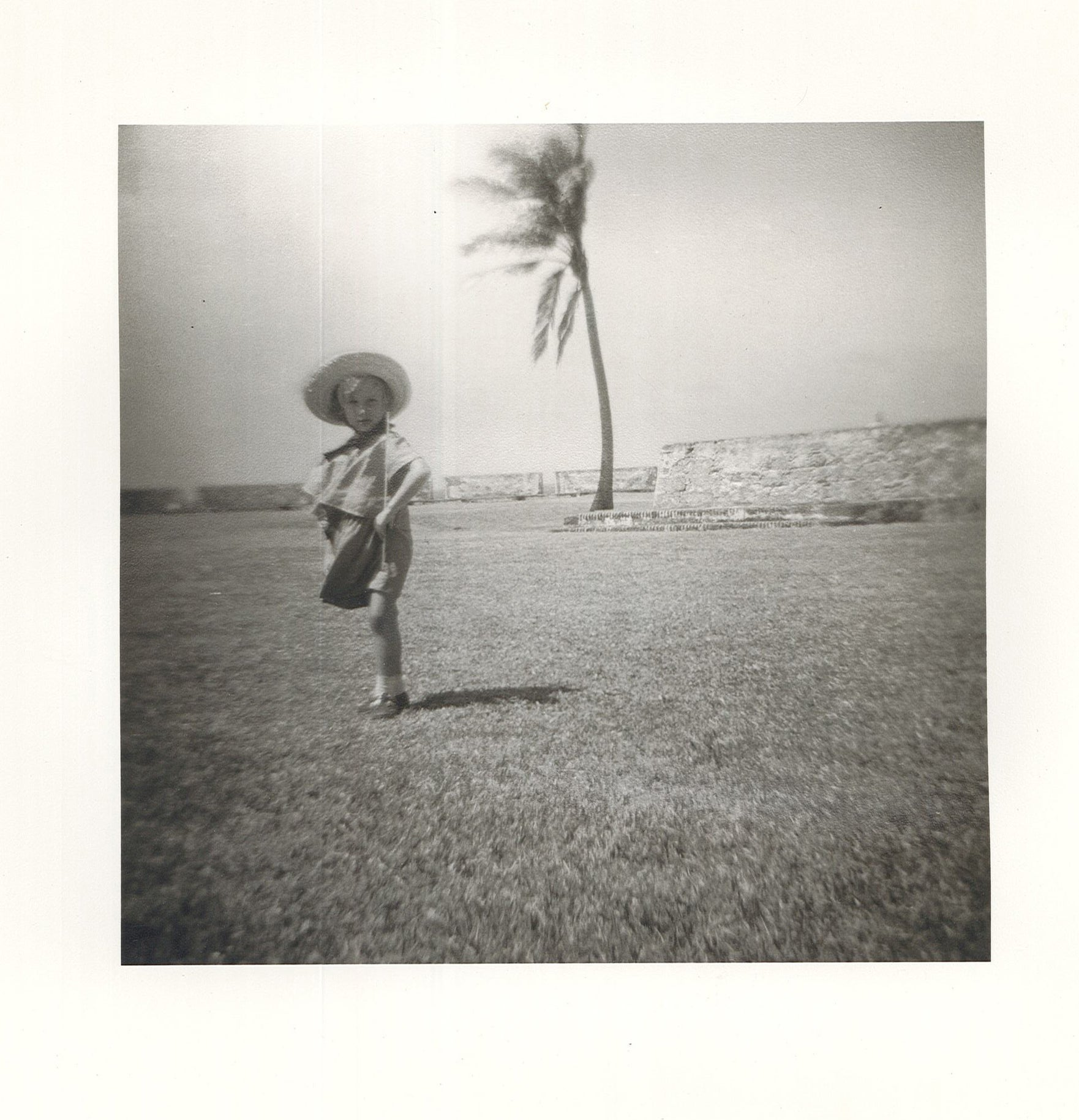 A picture of a young boy in a hat with a palm tree behind him