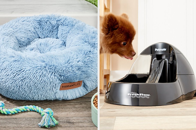 31 Problem-Solving Products From Walmart That Pet Owners Truly Love