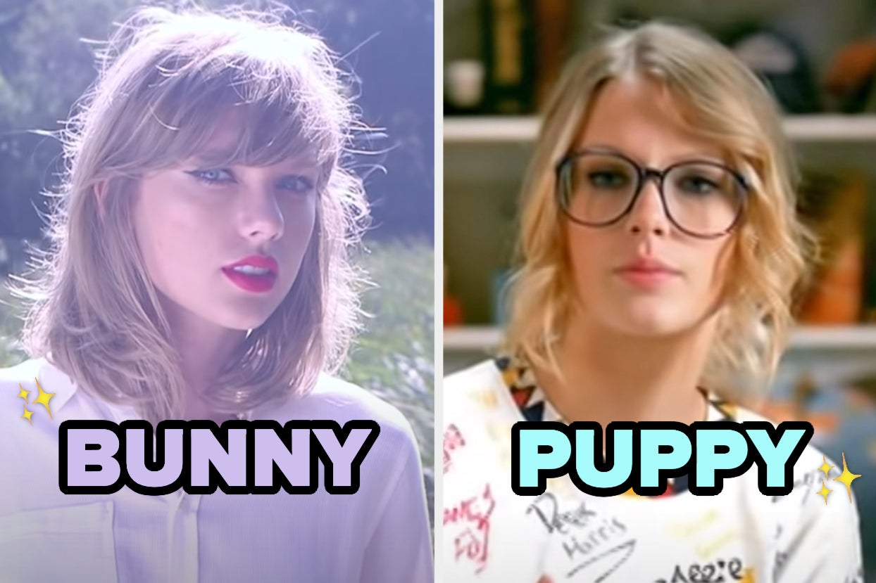 Ever Wondered What Pet Is Perfect For You? Just Choose Your Favorite Taylor Swift Songs To Find Out