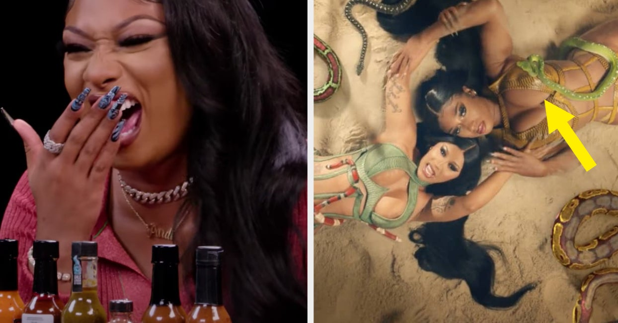 """Megan Thee Stallion Hilariously Explained What It Was Actually Like Working With Snakes On The """"WAP"""" Music Video"""