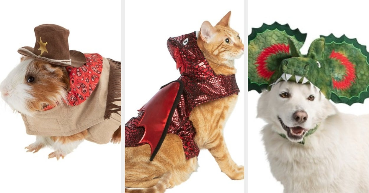25 Pet Costumes From PetSmart That'll Make This The Most Adorable Halloween Yet