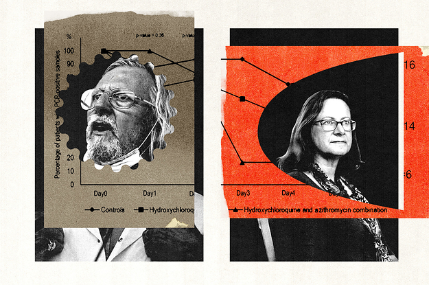 A Data Sleuth Challenged A Powerful COVID Scientist. Then He Came After Her.