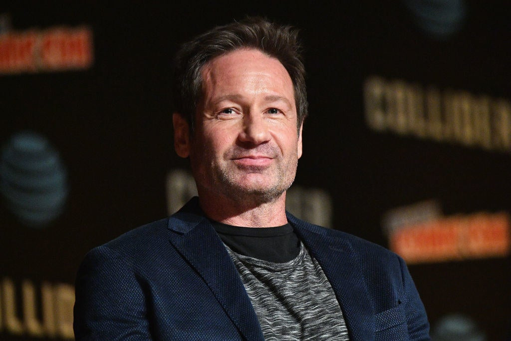 """David Duchovny Hilariously Recalled Auditioning For All The Lead Roles In """"Full House"""" And Not..."""