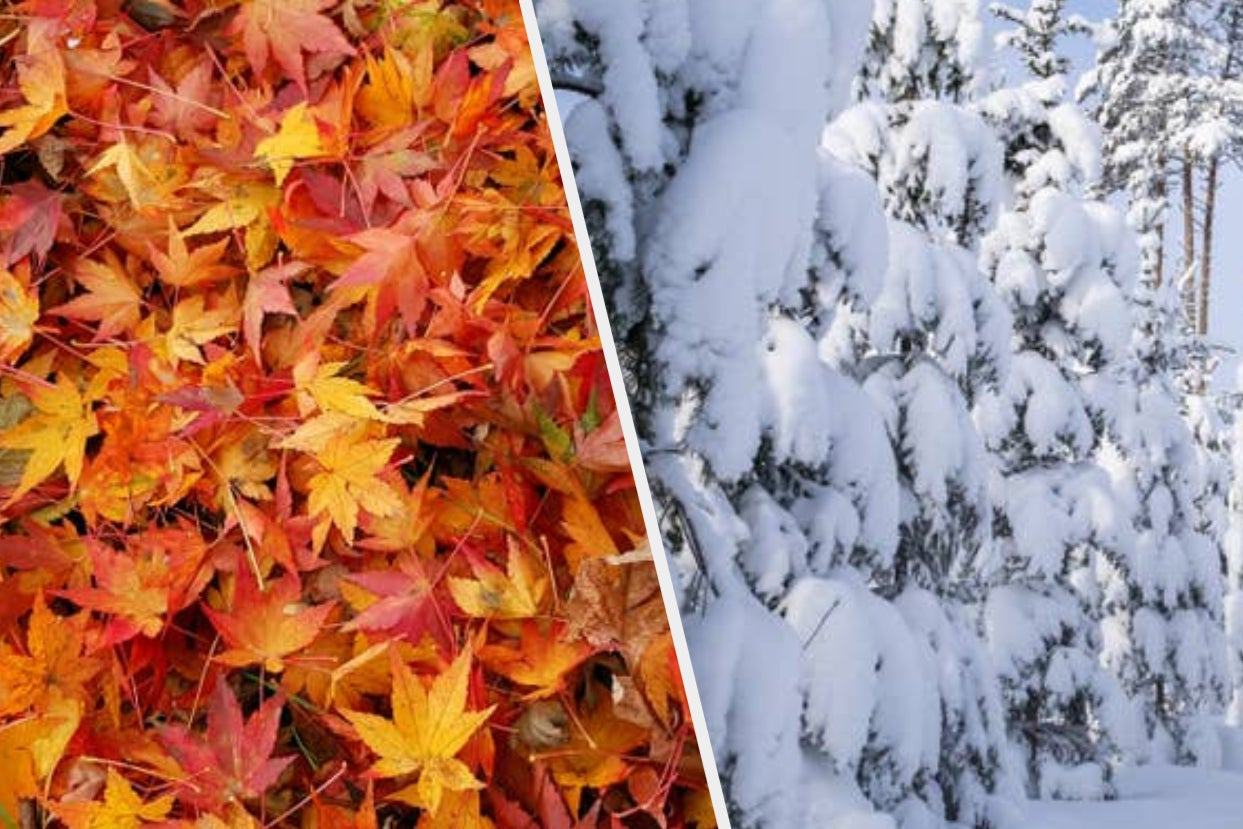 Which Season Actually Matches Your Personality?