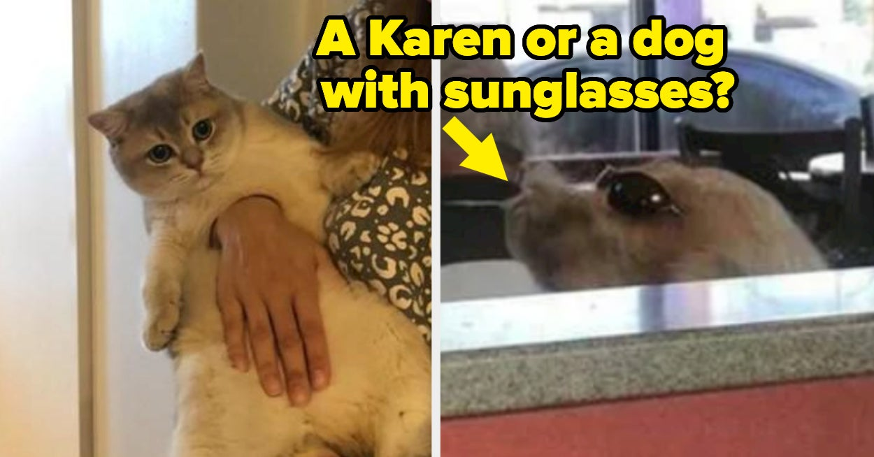 21 Confusing Photos That Will Probably Keep You Up At Night